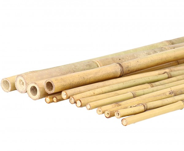 Tonkin Bambusrohr 200cm natur Durch. 3,5 bis 4cm