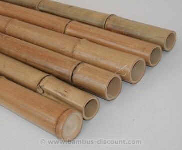 Bambusstange B-Ware Moso natur 200cm Durch. 6 bis 8cm, gelbbraun hitzebehandelt